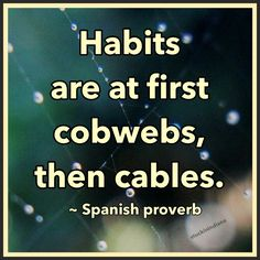 habits-cobwebs-cables